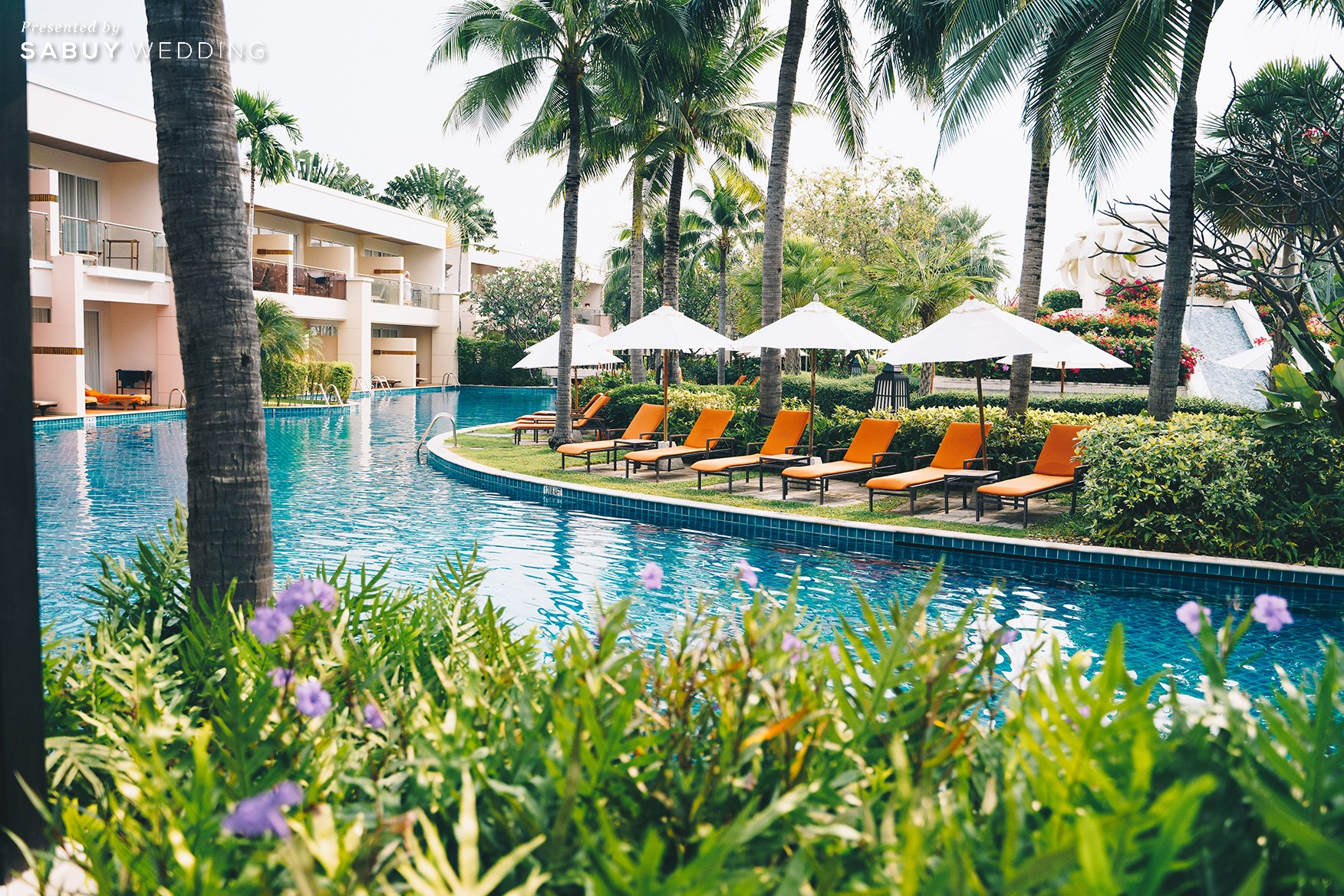 โดดเด่นด้วยสระว่ายน้ำไซส์ใหญ่สไตล์ลากูน พร้อมดื่มด่ำบรรยากาศริมหาด @ Sheraton Hua Hin Resort & Spa